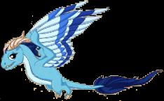 Wind Dragon Adult