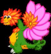 Flower Dragon Adult