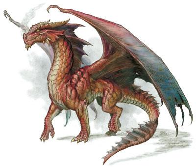 File:Red european dragon 3.jpg