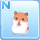 HamsterOrange