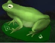 File:Large Frog.png