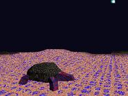 Tortoisekanji