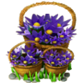 Baskets of wind flowers deco