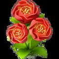Res scarlet flower 3