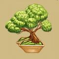 Coll eastern decorative tree