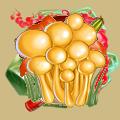 Coll mushroom armillaria