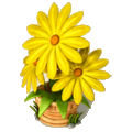 Yellow aster deco