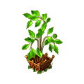 Young tree deco