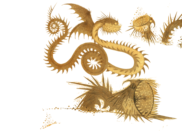 File:Dragons bod whisper stats dragonlayer.png