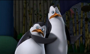 Kowalski and private2