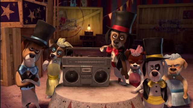 File:Madagascar3-disneyscreencaps.com-4332.jpg