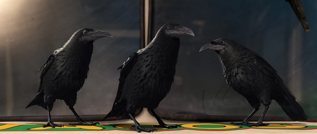 File:The Crows.png