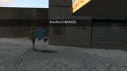 StealToOrderEasy-DPL-Perfect-$5000