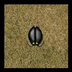 Roach (RPG)