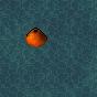 WaterskipperNest 4x4