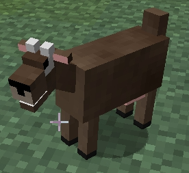 File:Female Goat.jpg