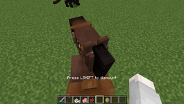 Horse breaking