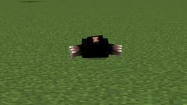 Mole peeking out