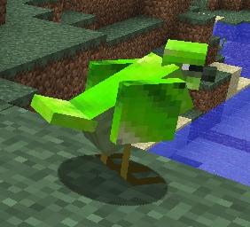 File:Green Bird.jpg