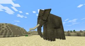 Elephant desert