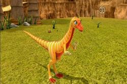 Erma Eoraptor