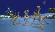 Pack of Northern Troodon