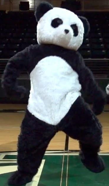 Panda Dude Perfect Wiki Fandom Powered By Wikia