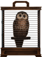 MM Brown Owl