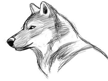 Lewis Sketch 3