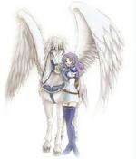 PegasusKnight