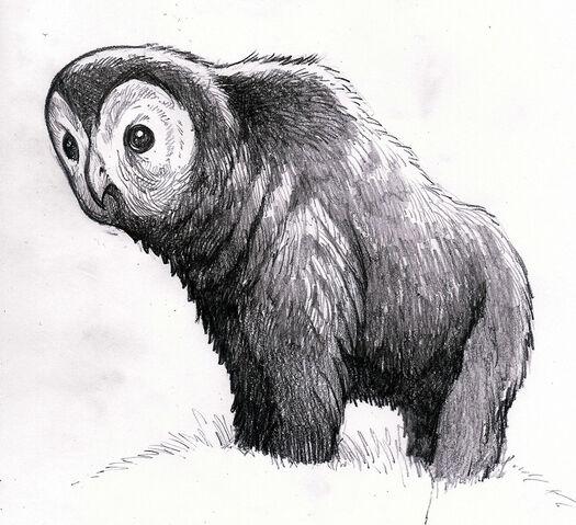 File:Owlbear1.jpg