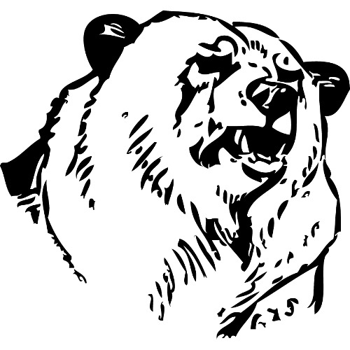 Line Drawing Bear : Image pg bear head g dungeons and dragons wiki