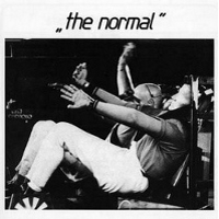 The+normal+-+warm+leatherette