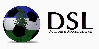 File:DSL logo.png