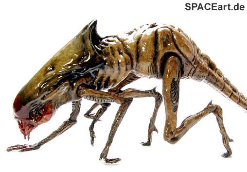 File:Alien 3 queen chestburster modell bausatz halcyon-b.jpg