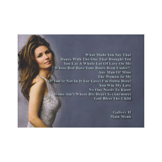 Shania Twain: The Platinum Collection - Video Selection