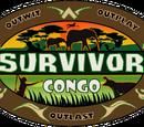 DVMP's Survivor Records Wiki
