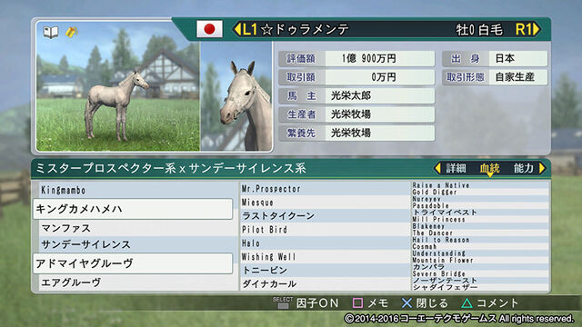 File:Horsedirect1-wp82016dlc.jpg