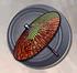 Speed Weapon - Okuni