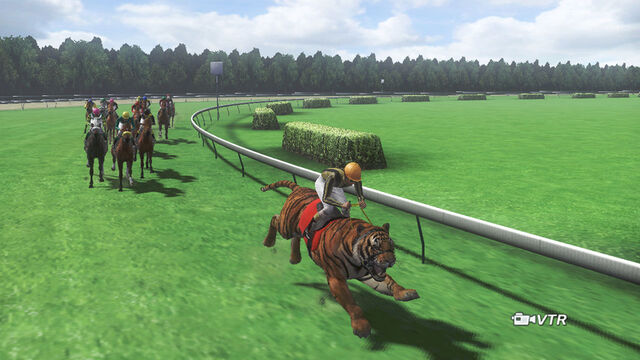 File:Championjockey-dlc01-01-tiger.jpg