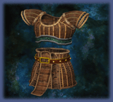 File:Shell Armor.png