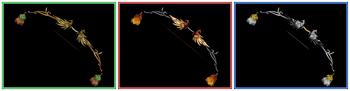 DW Strikeforce - Bow 12