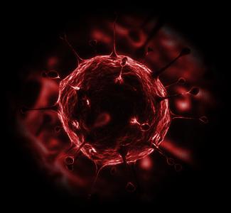 File:Virus.png