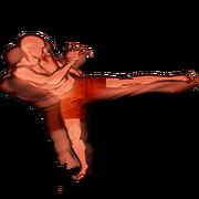 Switch leg kick body action