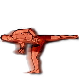 File:Aldo spinning side kick body action.png