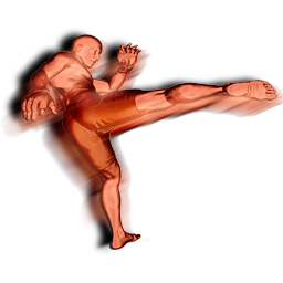File:Roundhouse body action.png