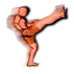 File:Front kick head action.png
