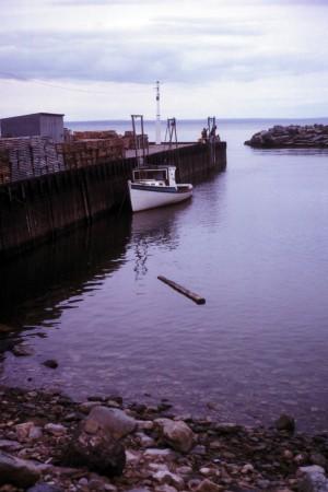 File:Bay of Fundy High Tide.jpg