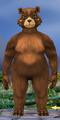 Body-Rotound Female-Ursine
