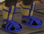 Fancy Combat Boots
